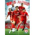 Liverpool (hráči) 2010/2011 - 3D plakát