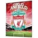 FC Liverpool - 3D plakát